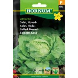 Salat Hoved F