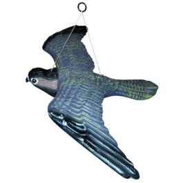 Skræmmer Flyvende Rovfugl