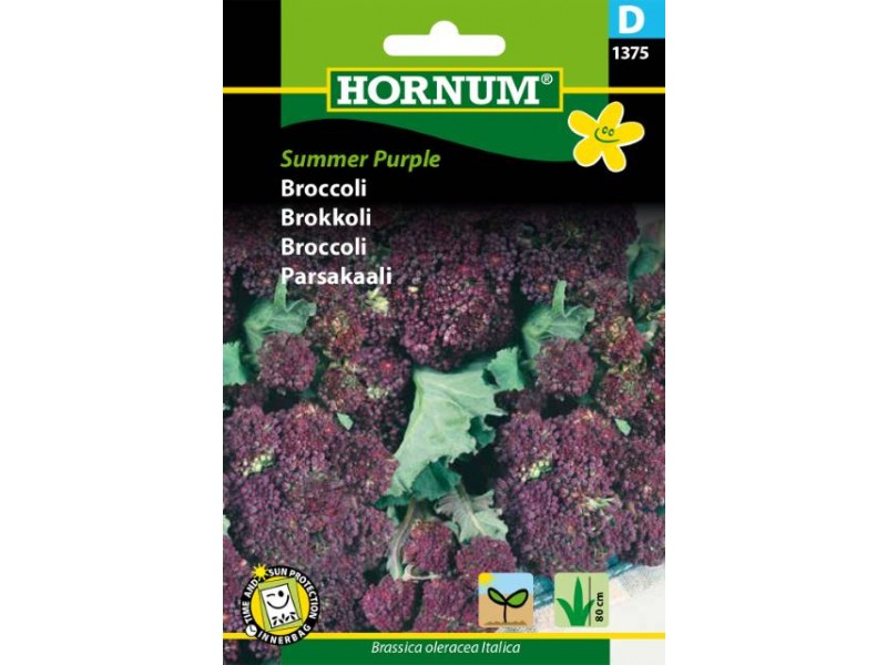 Broccoli Summer Purple D
