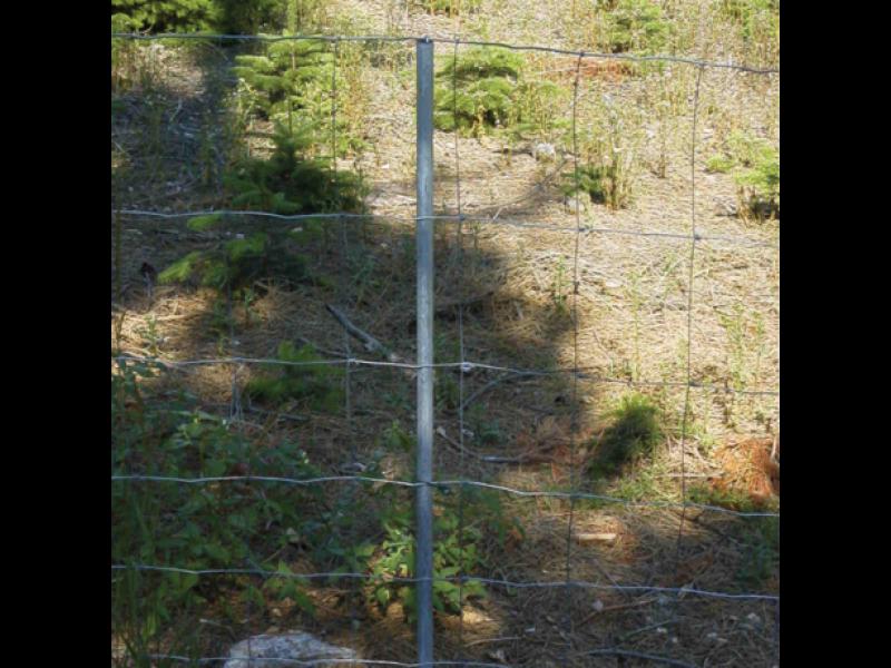 Hegnspæle Vandrør 230cm