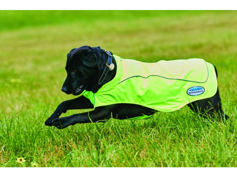 WB dog coat reflective exerc.