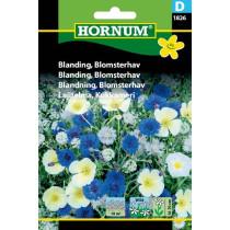 Blanding Blomsterhav