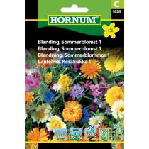 Blanding Sommerblomst 1