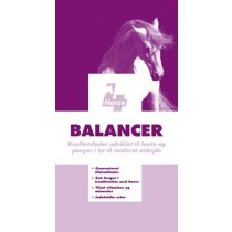 4Horse Balancer