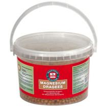 Salvana Magnesium Dragee 0,750