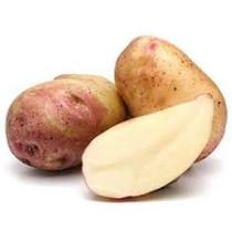 King Edward læggekartof. 2 kg