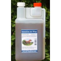 Air 1 liter