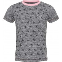 Dani T-shirt grey melange
