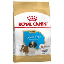 Shih Tzu Puppy 1,5 kg