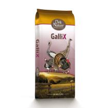 Fasan Start GALLIX 42x20kg
