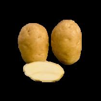 Fontane læggekartofler 25kg