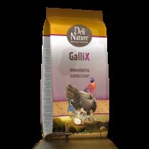 GalliX Ornamental Super Start