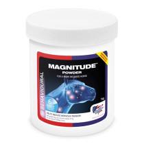 Magnitude Powder 1 kg