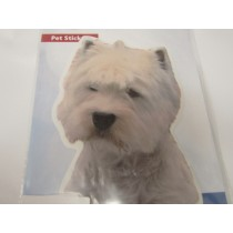 West highland terrier hoved