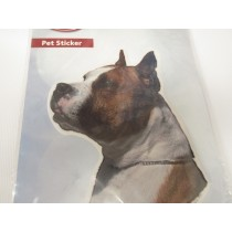 Am.staffordshire terrier hoved