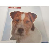 Jack Russel Terrier hoved