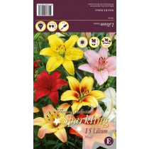 Lilje Asiatic Mixed