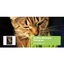 Turfline Kattegræs Økologisk