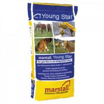 Marstall Young Star