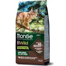 Monge Cat BW GF Large Buffa.1«