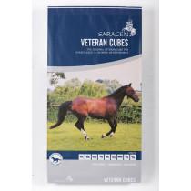 Saracen Veteran Cubes