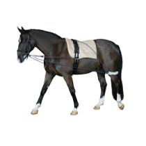 Longeringssystem Pony sort