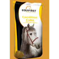 Equifirst Condition Cube 20kg