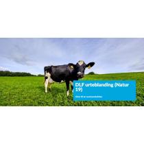 DLF Urteblanding (Natur 19) 2k